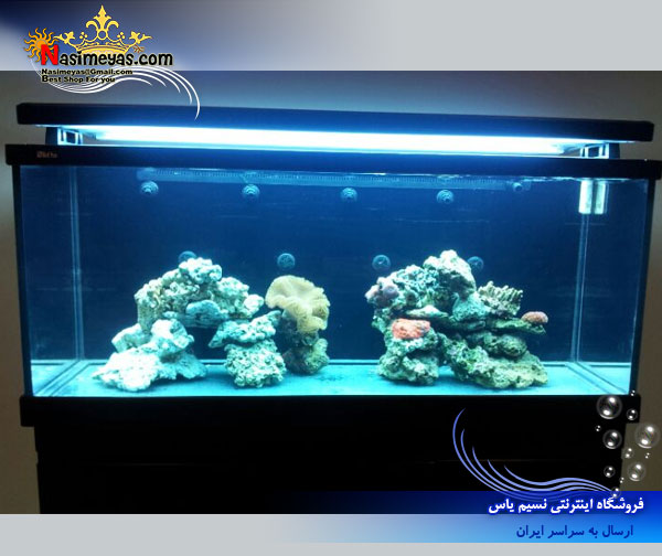 Red Sea MAX S-650  True REEF-SPEC® for a successful reef