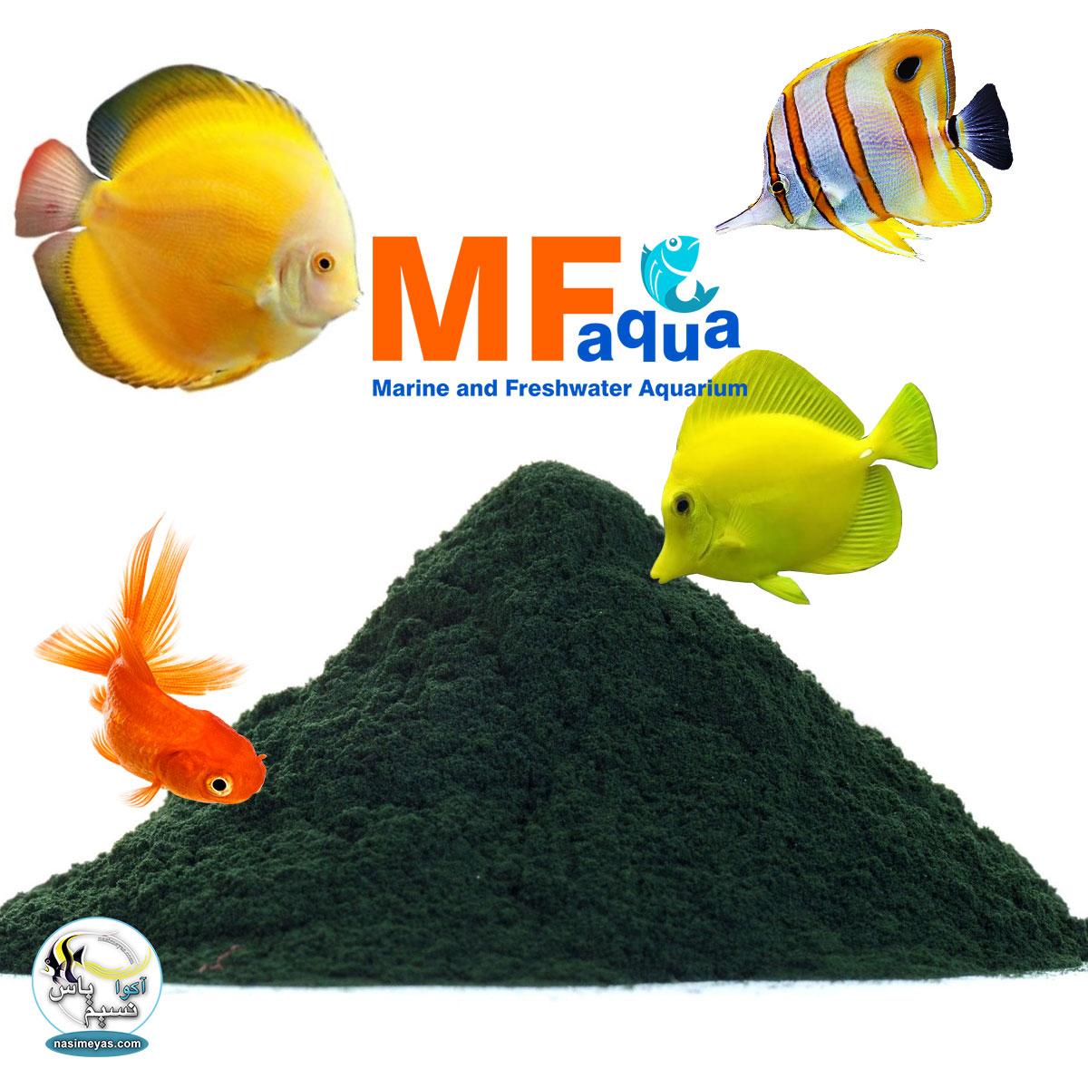 پودر اسپیرولینا خلوص 100 درصد ام اف آکوا MF aqua Spirulina Powder 100% 18gr
