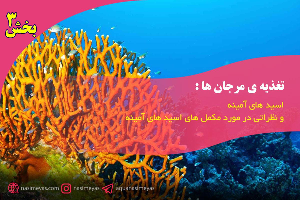تغذیه ی مرجان ها : اسید های آمینه و مکمل های مربوطه – بخش سوم