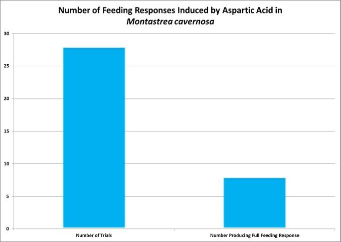 اسپارتیک اسید واکنش های تغذیه ای ضعیفی را تولید می نماید
