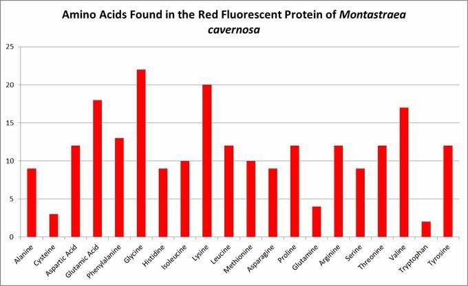 کد ژنتیکی این پروتئین فلورسنتی شامل ۲۰ آمینو اسید است