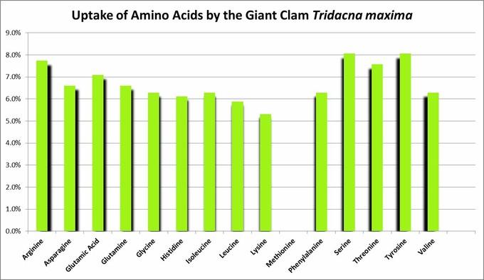 جذب آمینو اسید های آزاد توسط صدف Tridacna