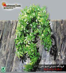 گیاه مصنوعی آویز کانابیس تراریوم جی بی ال