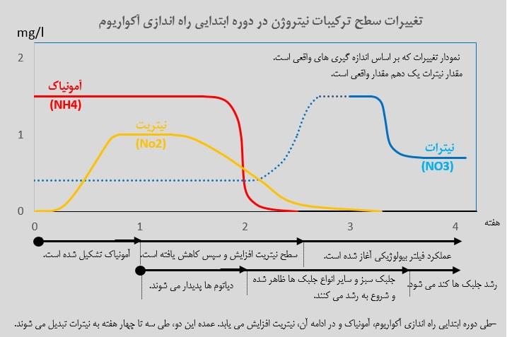 نمودار تغییرات سطح نیتروژن در ابتدای راه اندازی آکواریوم