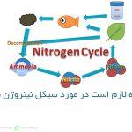 هرآنچه لازم است در مورد سیکل نیتروژن بدانید