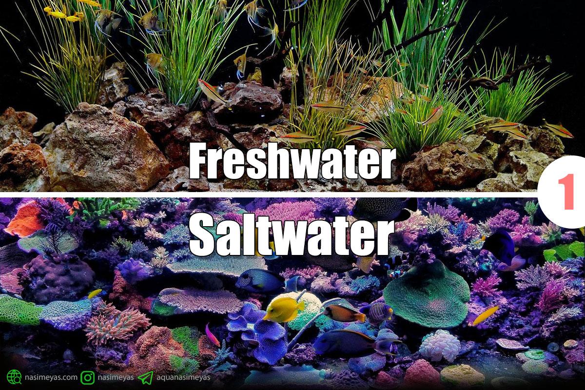 تغییر از آکوایوم آب شیرین به آب شور