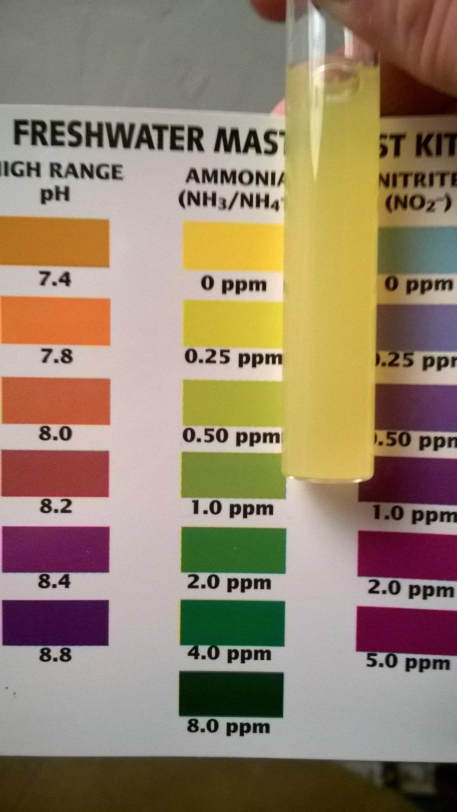 سنجش سطح آمونیاک در روزهای اولیه راه اندازی