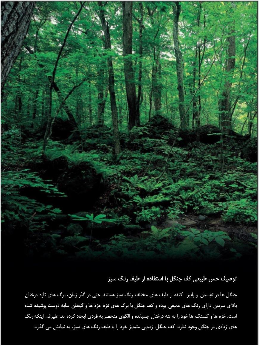 توصیف حس طبیعی کف جنگل با استفاده از طیف رنگ سبز