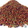 غذای گرانول کوی فود ۱۰۰۰ میل مالزی