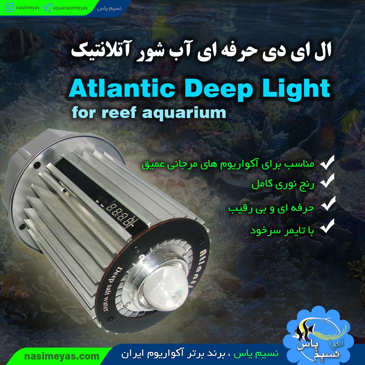 Atlantic Deep light for reef aquarium