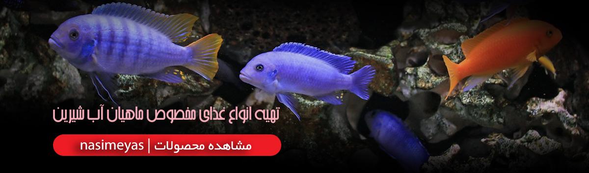 فروش انواع غذای مخصوص ماهیان آب شیرین
