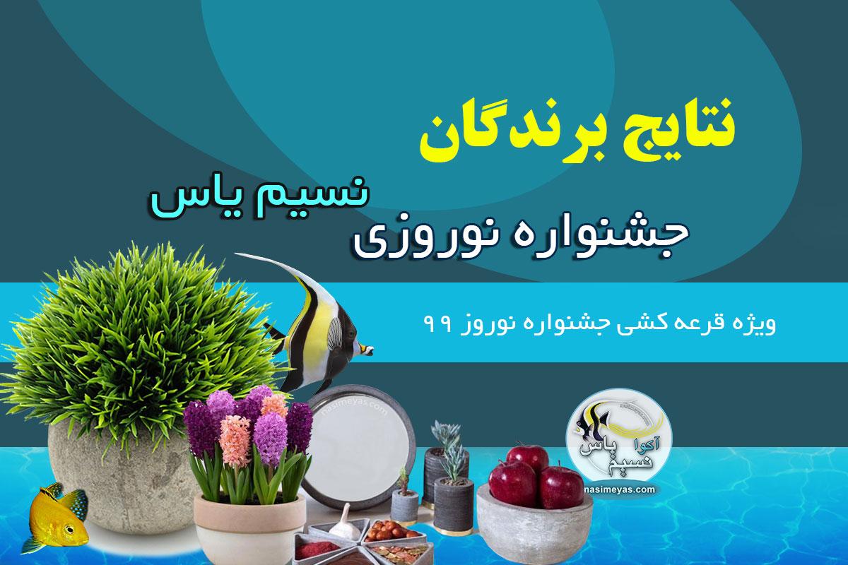 برندگان جشنواره نوروزی 99 نسیم یاس