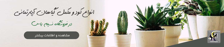 فروش انواع کود و مکمل گیاهان آپارتمانی