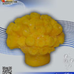 دکور مرجان مصنوعی کد ۱۲۷ کورال کالکشن