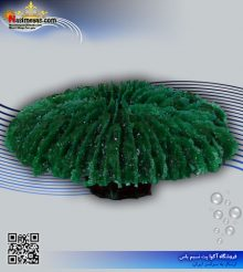 دکور مرجان مصنوعی کد 140 کورال کالکشن