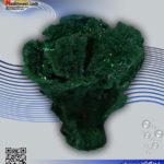 دکور مرجان مصنوعی کد ۱۲۰ کورال کالکشن