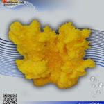 دکور مرجان مصنوعی کد ۱۰۹ کورال کالکشن