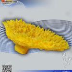 دکور مرجان مصنوعی کد ۱۱۲ کورال کالکشن