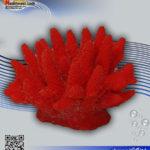 دکور مرجان مصنوعی کد ۱۰۲ کورال کالکشن