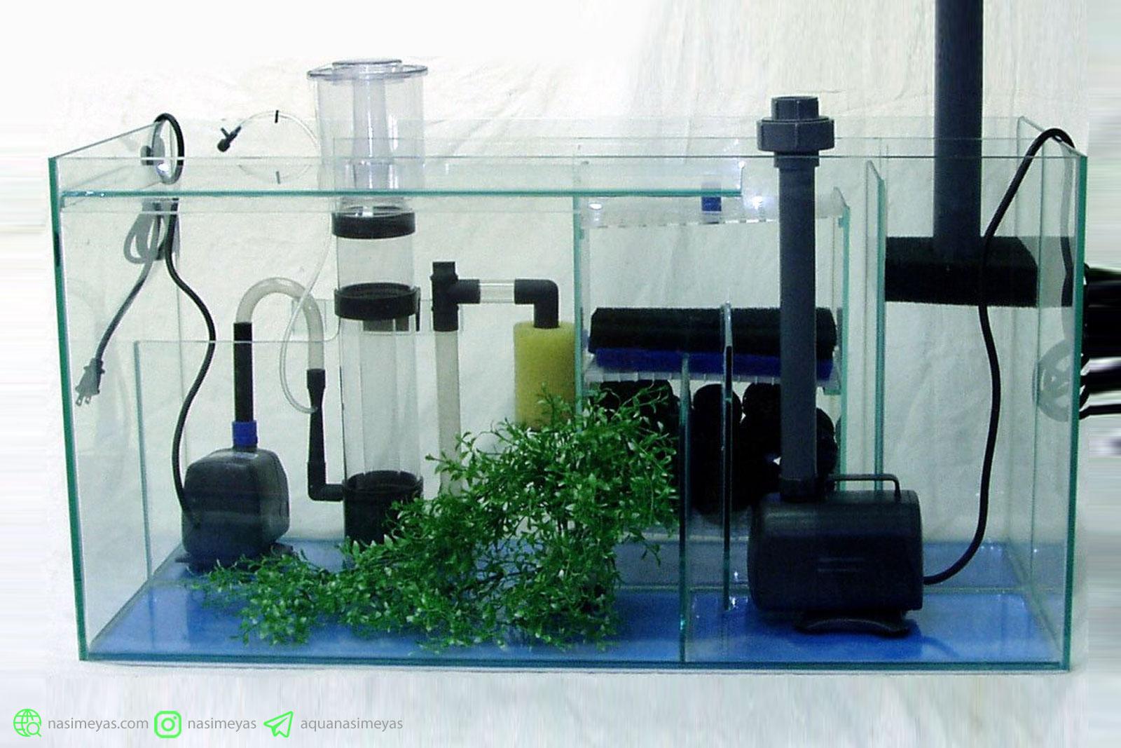 انواع فیلتر های آکواریوم به صورت تکمیلی و مفهوم چرخه نیتروژن