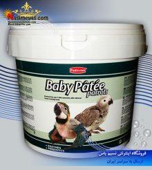 سرلاک نوزاد طوطی ۱ کیلویی پادوان