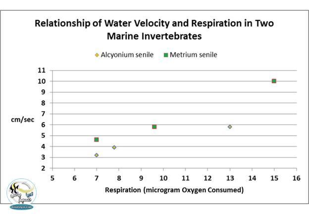 تنفس در این دو بی مهره ی دریایی نسبت به سرعت آب افزایش و کاهش می یابد