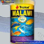 غذای پولکی سیچلایدهای مالاوی تروپیکال