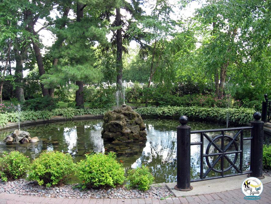 برکه ماهی ( Fish pond )